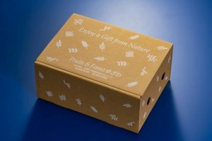 画像1: 【送料込み】果物の恵み フレッシュブルーベリー (約 600g ) 贈答品