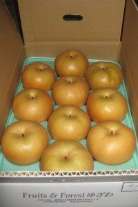 【送料込み】果物の恵み 南水 約5kg サイズ 7個〜13個入り